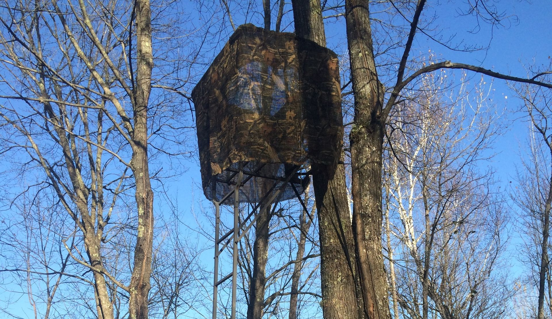 How to Make Tree Stand Hunting More Effective