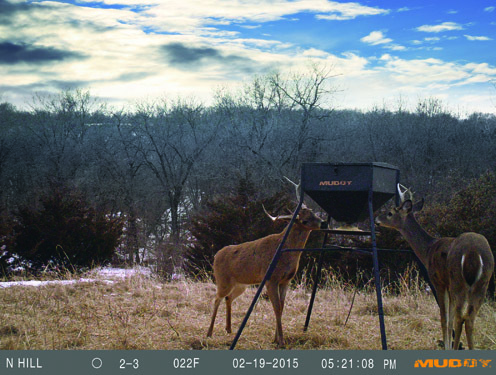 feeding-deer-feeders-101_pic4 (1)